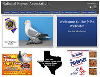 PigeonClubsUSA com